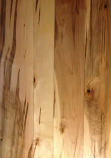 New soft ambrosia, wormy maple